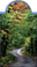 mágneses könyvjelző erdő